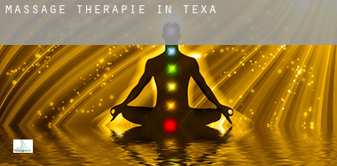 Massage therapie in  Texas