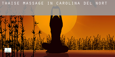 Thaise massage in  North Carolina